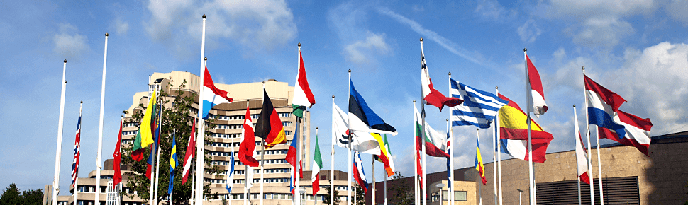 Европейские языки — 7 фактов